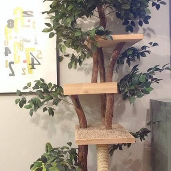 Petit arbre a chat - guide